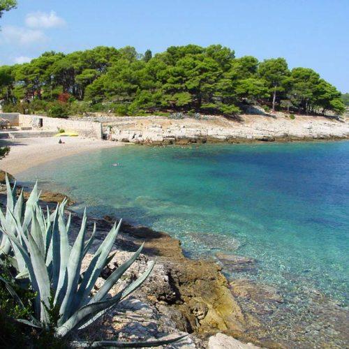 Island of Vis